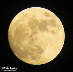 Full Moon - November 24, 2015