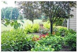 Garden of Ben and Joy Bayer on Salem Road