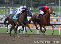 Twirling Candy's Record-Breaking Win in the Malibu Stakes