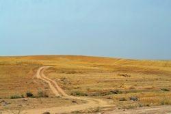 Plains of Rueben
