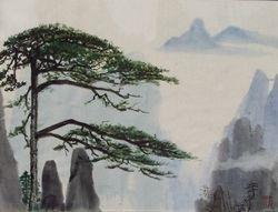 Pine Tree in HuangShan  China