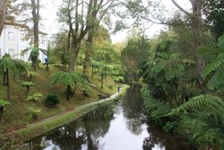 The Azores - Botanical Gardens