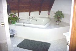"""Heart Shaped Jacuzzi for """"2"""""""