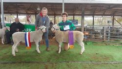 Champion and Reserve Champ
