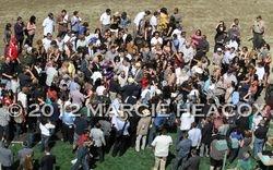 Winners' Circle Mob