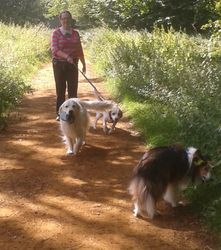 With Sarah, Bailey and Brodie at the forest