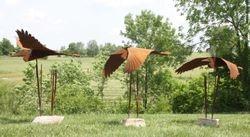 Heron Trio in Flight