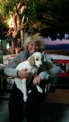 Rosemary with Paxi - ( an abandoned dog now living in Italy)