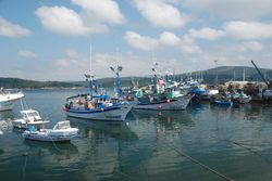 Fishing boats in Camarinas