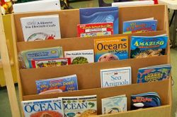Some of our ocean books