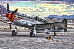 P-51 Mustang in the South Pacific: