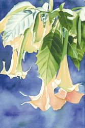Trumpets Glowing