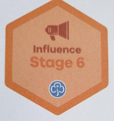 Influence Stage 6 Skill Builder