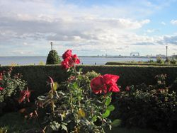 Leif Erikson Rose Garden & Lake Superior