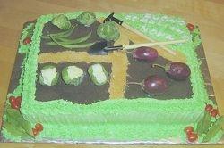Vegetable Garden Cake
