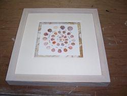 Shells Box Frame