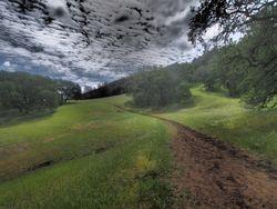 Trail, Briones Regional Park