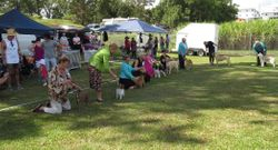 Puppy Sweepstakes Tweed Ag
