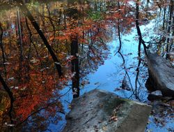 Little Patuxent River 2