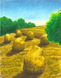 Harvest Gold, Oil Pastel, 11x14, Original Sold