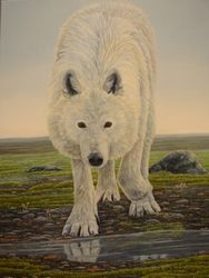 "Meeting of Two Worlds-Arctic Wolf (24 by 18"" oil on canvas) In Private Collection"