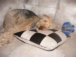 Still comfy.....
