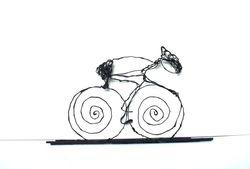 wielrenner nieuw 8