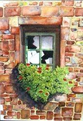 The window box   I/D  506D