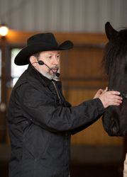 Jeff working with Fesian gelding
