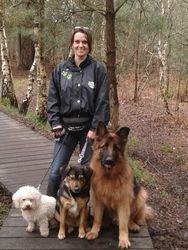 Walking Dogs in Sandhurst