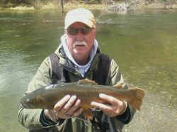 Uncompahger River, CO Cutthroat