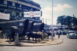 326 Oxen carts Colombo Sri Lanka
