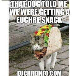 That dog told me we were getting a Euchre snack.