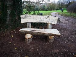 new rustic park bench november 2018