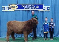 2017 Grand Champion Prospect Steer