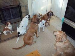 group sit at door