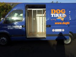 Dog Tired Van Open Side View