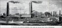 Tipton, Staffs. 1871.