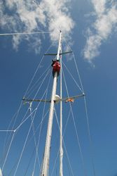 Ann up the mast!