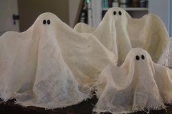 Country Gentlemen ghosts!