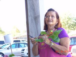 Kathy Granoff from Florida gives a demonstration on rooting cuttings