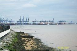 Felixstowe Docks from Shotley