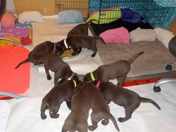 Back to nursery for bedtime snack