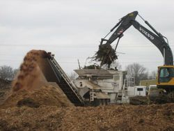 Wood Chip Grinding