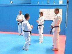 Kumite Techniques