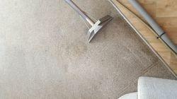 Carpet clean in progress