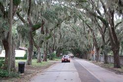 Magnolia Ave., St. Augustine FL