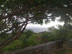 Paysage en Haìti sur la côte d'Anse d'Azur