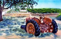 The Tractor at Kynsi Winery, Arroyo Grande