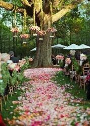 Silk Rose Petals   #R19